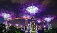 新加坡金融管理局就ICO的证券界定给出概述