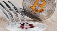 什么是BCH(Bitcoin Cash),什么是比特币现金BCC