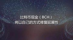 比特币现金BCH将以自己的方式修复延展性