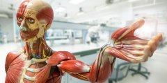 西奈山医院探讨区块链应用