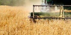 四大农业巨头聚焦区块链技术,以推动全球贸易数字化