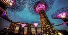 新加坡金融管理局发布最新的ICO指南