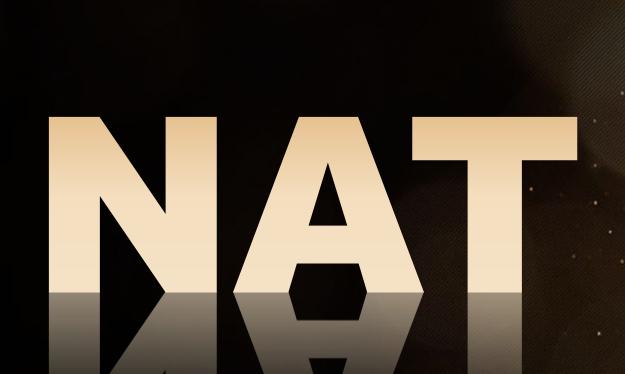 NAT生态激励的大门已经打开,持仓激励活动即将开启