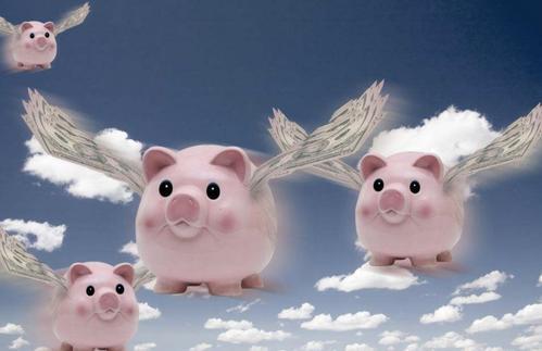 下半年四大风口解读下波卡和IPFS——公认的风口吹起来的都是少数的猪,不是