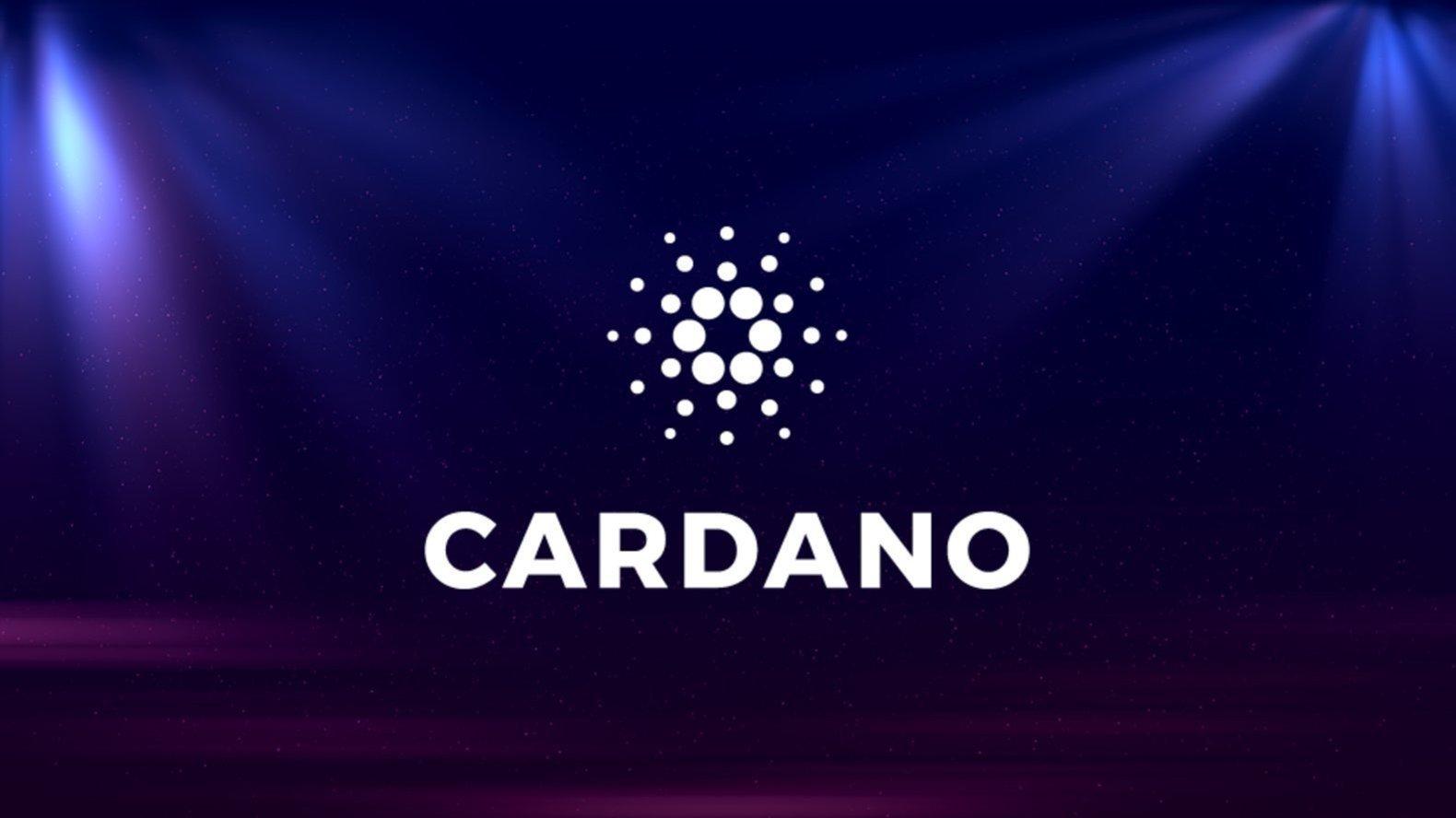 卡尔达诺首席执行官提供公司进入非洲市场的细分