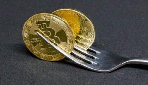 Bitkub补偿错过比特币现金ABC硬分叉的泰国投资者